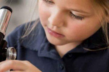 web-STEM-to-STEAM-education